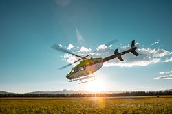 Horizon Travel Yeti Aviation