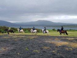 Valentia Island Pony Trekking