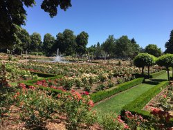 Peninsula Park and Rose Gardens