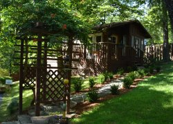 The Woods Treehouse Cabins