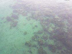 YTL Gaya Island