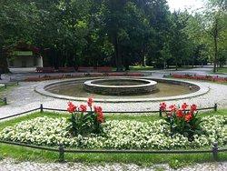 Stadtpark Steglitz