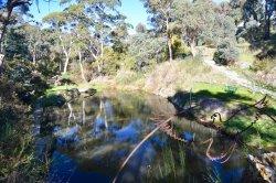 Hepburn Mineral Springs Reserve