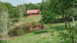 Ambuja Farms