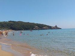 Lilium Beach