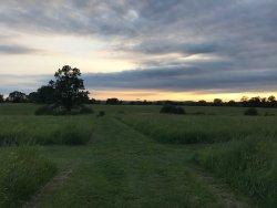 Happy Landings Farm