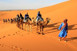 Merzouga Expedition