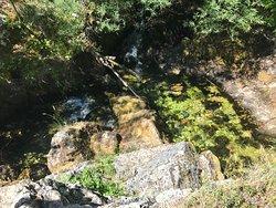 Vevchani Springs