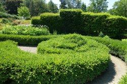 多伦多植物园