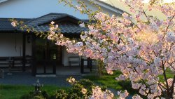 Monastero Zen SanboJi Tempio dei Tre gioielli