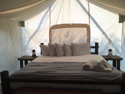 """Great """"glamping"""" experience, highly recommend!"""