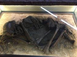 מוזיאון האדם הקדמון- מעין ברוך