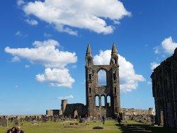 Scot Free Tours