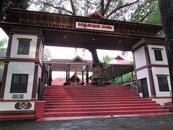 Sri Nellikattu Bagavathi temple