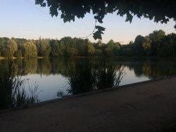 Parc de l'Arrou ou Lac de la Pinconniere
