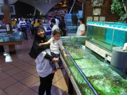 Ied holiday