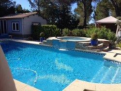 Swimming pool among the pines