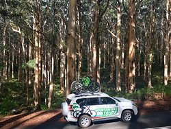 Margaret River Mountain Bike Tours