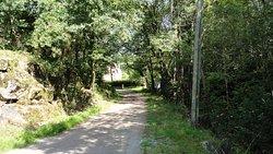 Parc Regional du Morvan