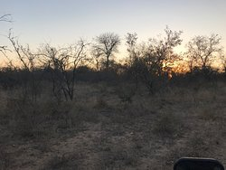 Unbelievable game drives