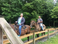 Cades Cove Riding Stables