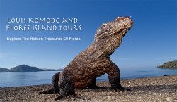 Louis Komodo and Flores Island Tours