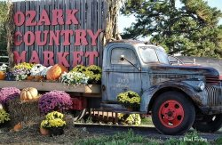 Ozark Country Market