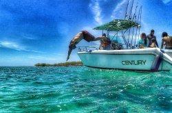 Bain's Sea Adventure
