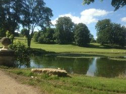 Fantastic faultless countryside break in beautiful hall and grounds