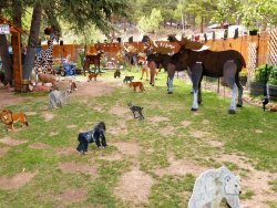 Sweety's Wildlife Preserve Art Zoo