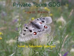 Private Tours GDG