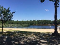 Waretown Lake & Recreation Area
