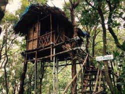 An amazing experience with Regina Silva camping resort.