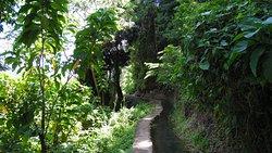 Canal De Beauregard (Canal des esclaves)