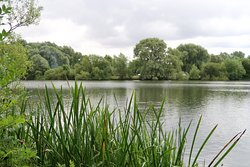 Emberton Country Park