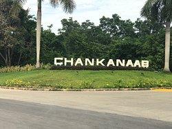 Chankanaab Beach Adventure Park