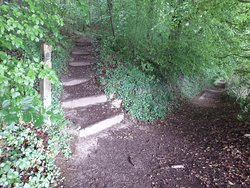 Path to Coopers Hill