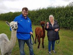 Winwick Barn Alpacas