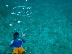 Belize Diving Adventures
