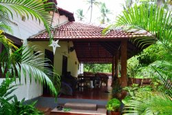 Relaxing stay in a Palm Grove