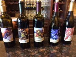 Kana Winery