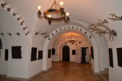 Awesome Medieval Castle Hotel with Modern Amenities