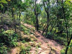 Jin Mian Shan Trail