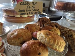 Homemade scone cream tea