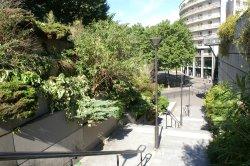 Jardin de Reuilly Paul Pernin