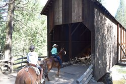 Going through the covered bridge