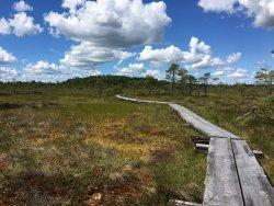 Torronsuo National Park