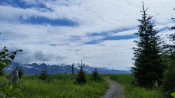Tonsina Creek Trail