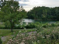 Lillie Park