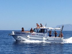 Marlin Tour Privati